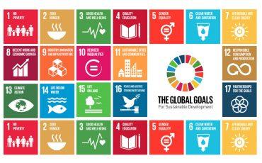 SDG-19